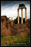 Forum, Rome, Italy