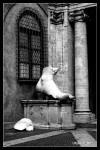 rome-black-and-white-003